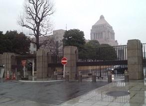 今日は雨の国会.jpg