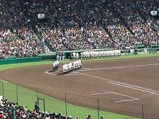 夏甲子園.jpg