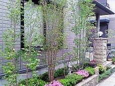 庭です.JPG