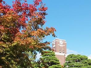 秋の京大.jpg