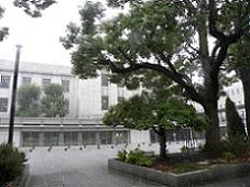 雨国会2.jpg