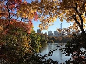 NY風景.jpg